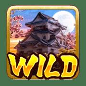 NinjavsSamurai_S_Wild