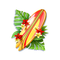 bikini-paradise_h_surfboard