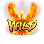 phoenix-rises_s_wild