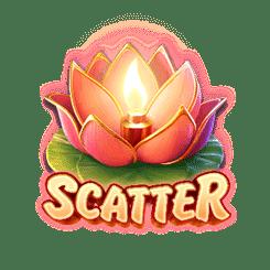 wild-fireworks_scatter
