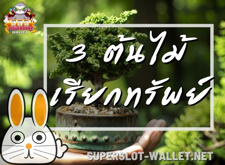 3 ต้นไม้เรียกทรัพย์